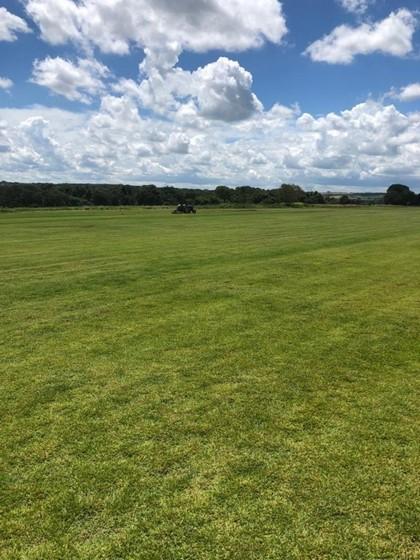 procuro por fornecedor de grama para campo de futebol Manaus