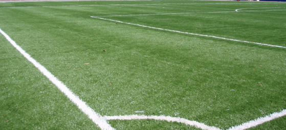 Grama de Campo Futebol á Venda Vinhedo - Grama para Campo por Metro Quadrado