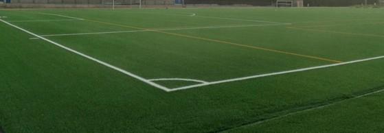 Grama Natural Campo de Futebol Porto Velho - Grama para Campo por Metro Quadrado