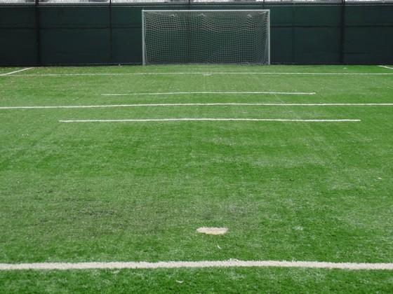 Grama para Campo de Futebol Society Bragança Paulista - Grama para Campo por Metro Quadrado