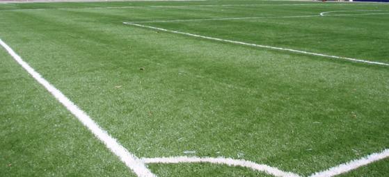 Grama para Campo Futebol Goiânia - Grama para Campo por Metro Quadrado
