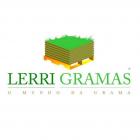 Rolo de Grama para Jardim Natural Manaus - Rolo de Grama de Qualidade - Lerri Gramas