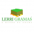 Rolo Tapete de Grama Natural Amparo - Rolo de Grama Esmeralda - Lerri Gramas