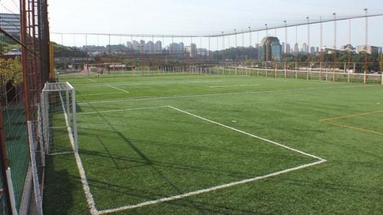 Quanto Custa Grama para Campo de Futebol Society Presidente Prudente - Grama para Campo por Metro Quadrado