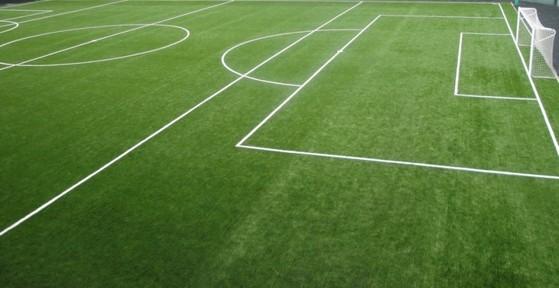Quanto Custa Grama para Campo Futebol Franca - Grama para Campo por Metro Quadrado