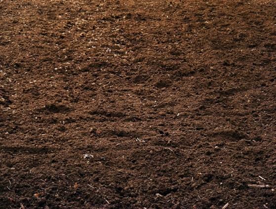 Terra Adubada e Terra Vegetal Valor Porto Velho - Terra Adubada 20kg