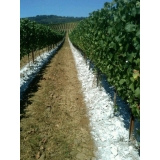 calcário fertilizante