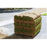 comprar rolo de grama bermuda Araraquara
