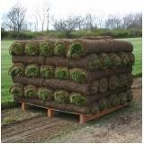 comprar rolo de grama de qualidade Valinhos