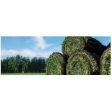 comprar rolo de grama para campo Itapetininga