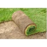 comprar rolo de grama para jardim Americana