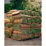 comprar rolo de grama para paisagismo Bauru