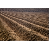 cotar terra adubada para grama Americana