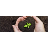 cotar terra adubada para horta Vinhedo