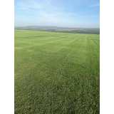 fornecedor de grama em campo de golf Goiânia