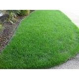 grama bermuda jardim preço Itatiba