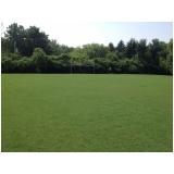 grama bermuda para campo de futebol Limeira