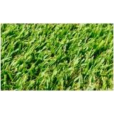 grama esmeralda barata Goiânia