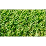 grama esmeralda barata Itatiba