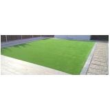 grama esmeralda para decoração Franca