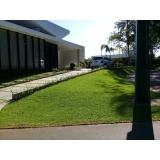 grama esmeralda para paisagismo orçamento Belo Horizonte