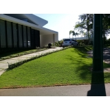 grama esmeralda para paisagismo orçamento Marapoama