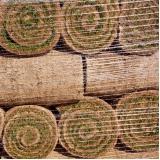 grama natural em rolo Porto Velho