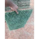 grama natural metro quadrado preço Vinhedo