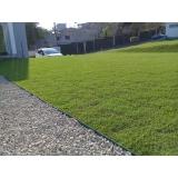 grama natural para jardim Presidente Prudente
