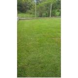 grama natural para quadra de tênis preço Teresina