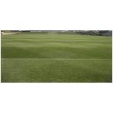 grama bermuda para campo de futebol