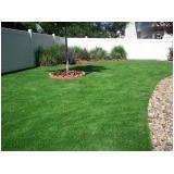 grama esmeralda para paisagismo