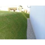 grama natural para jardim grande