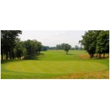 grama para campo de golfe