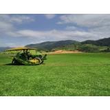 instalação de grama em campo valores Franca