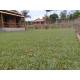 instalação de grama em chácara valores Boa Vista