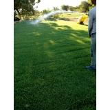 instalação de gramas em sítio Fortaleza
