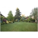 onde comprar grama esmeralda para jardim Louveira