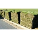 onde vende tapete de grama de qualidade Americana