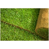 onde vende tapete grama decoração Campinas
