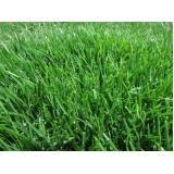 orçamento de grama natural campo de futebol Itatiba