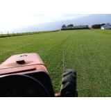 plantio de grama para campo orçar Valinhos