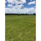 procuro por fornecedor de grama para campo de futebol Taubaté