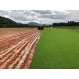 quanto custa plantio de grama em campo Atibaia