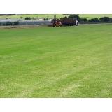 quanto custa plantio de grama para campo Araras