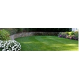 quero comprar grama bermuda jardim Belém
