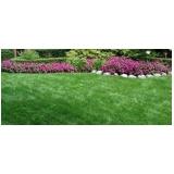 quero comprar grama bermuda para jardim Itatiba