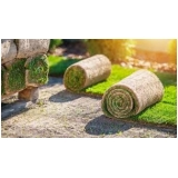 rolo de grama de qualidade Sorocaba