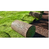 rolo de grama natural para campo Louveira
