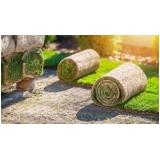 rolo de grama para decoração Marília